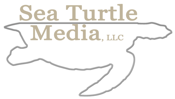 Sea Turtle Media Logo